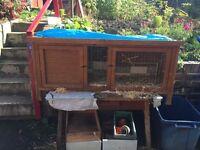 Used rabbit/guinea pig hutch