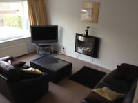 Double room rent all bills included available late October
