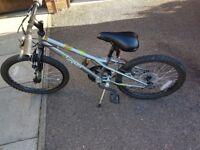 Apollo spektor bike