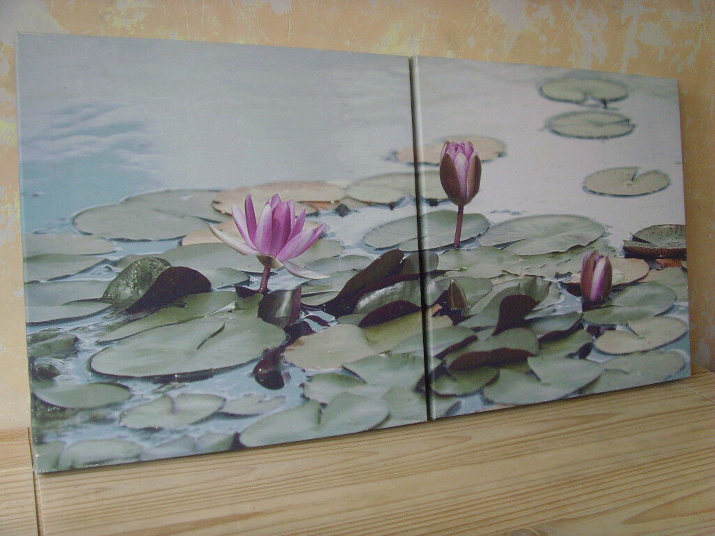 Two Matching Lotus Flower Canvas Prints Free Delivery In