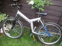 challenge gauntlet mountain bike