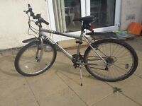 Used Trax Bike Bicycle Mountain women men man lady's. Good condition.