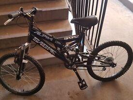 Alpha sabre bike