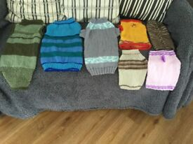 Hand knitted quality doggy jumpers