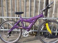 SERVICED ALUMINIUM RALEIGH BIKE - FREE DELIVERY TO OXFORD!