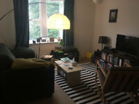 Double room in 2 bedroom flat close to city centre in Nether Edge/Sharrow £285 pcm