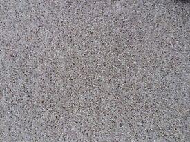 Bedroom carpet, twist pile, cream colour, 3.6 x 3.6 m with Duralay underlay