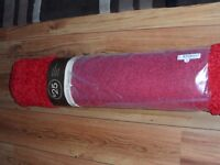 Red Shaggy Rug Brand New