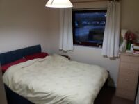 Double room available in the West End