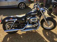 Black 2012 Harley Davidson XL 1200 Sportster