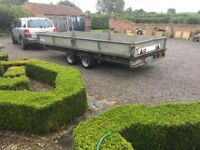 Large lfor Williams trailer 16ft x6