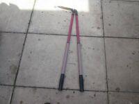 Long handle telescopic lawn shears