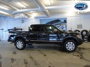 2014 Ford F-150 Platinum BLUETOOTH - REMOTE START - MOON ROOF