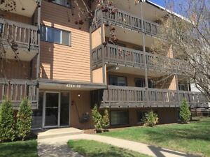 FREE RENT!!!!!! 2 bedroom Downtown  FULLY RENOVATED!!
