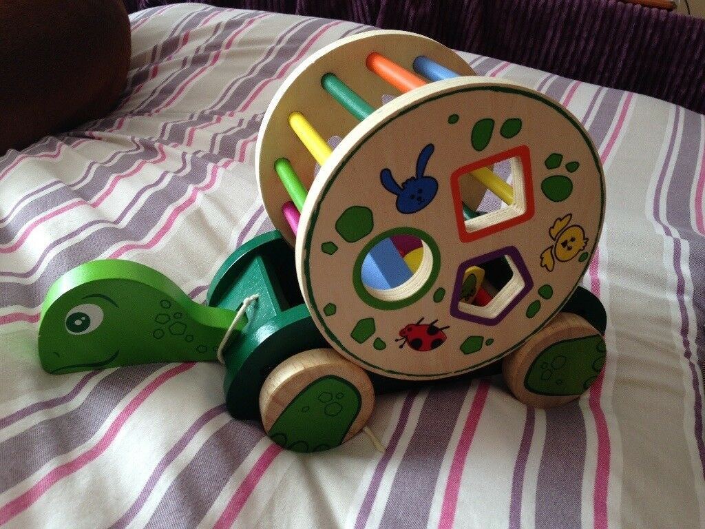 pull along tortoise shaper toy