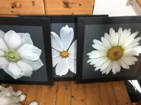 Flower canvas prints set of 3