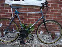 "Raleight NIRVANA bike ""26 w"