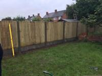Flat top vertical board tanalised fence panels