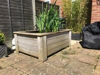 Solid Freestanding Pond With Pump and Plants