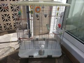 Bird cage ( LARGE ) vision