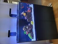 Red Sea Reefer 350 - Full Marine Tank Setup - Coral & Artificial Coral