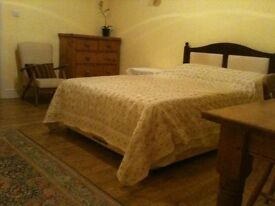 Spacious double room in large house on edge of Haldon Forest, shared kitchen / bathroom, garden,