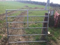 Ifor williams dividing gate