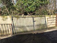 Traditional enterance gates