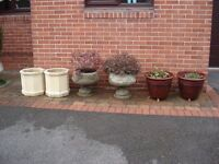 3 Pairs Of Planters With 4 Plants