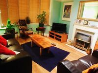very large bright fully furnished double room in quiet friendly houseshare