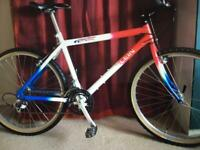 Klein Top Gun rare collectors vintage gents old school mountain bike bicycle trek kona Brompton bmx