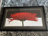 Large Framed Black and Red picture