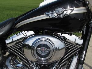 2003 harley-davidson FXDWG Dyna Wide Glide   $7,000 in Options a London Ontario image 7