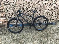 Rock rider 520 mountain bike