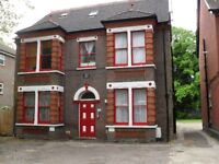 Spacious Studio Apartment, Refurbished, close to Town Centre, Train Station, Wardown Park, No DSS