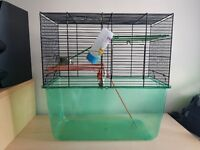 Hamster cage/ Gerbilarium - complete with EVERYTHING you need!!