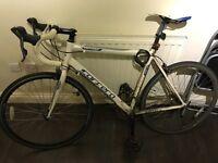 Unisex Carrera Road Bike