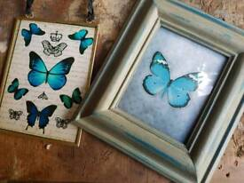 2 butterfly pics/hangings