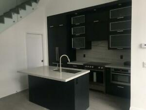 101 Erskine - Luxury Condo for Rent