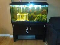fish tank and stand .. need gone ASAP. 60 gallon