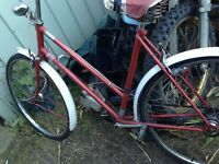 Trumph bike