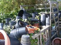 large selection of plant pots for sale various sizes £3