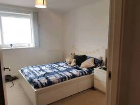 Room Available in Salford Quays