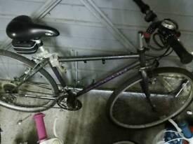 Shimano adults bike 700 c
