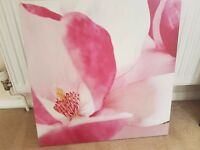 Flower Canvas Framed Picture