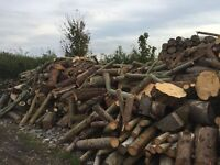 timber / firewood / hardwood / softwood / logs - south wales