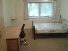 Ensuite Double room near station - spacious house share with professionals