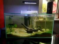 Aqua 1 tank