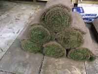 Sykes top quality turf 26 rolls
