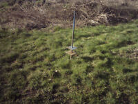 sheep post /stake for feed blocks or salt